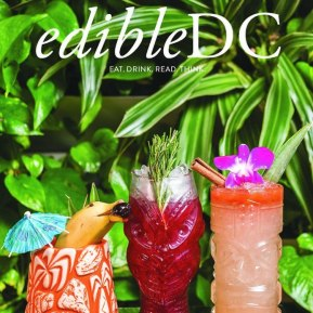 Edible DC